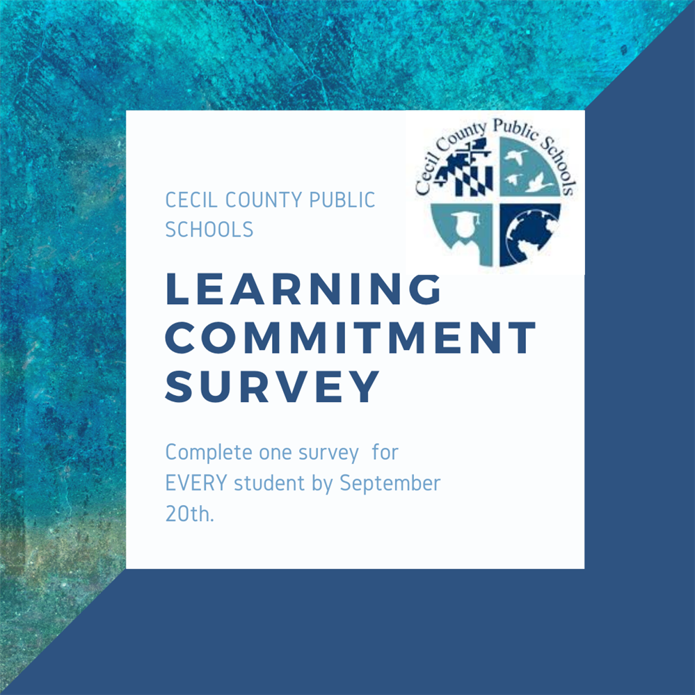Holly Hall Elementary Learning Commitment Survey Information